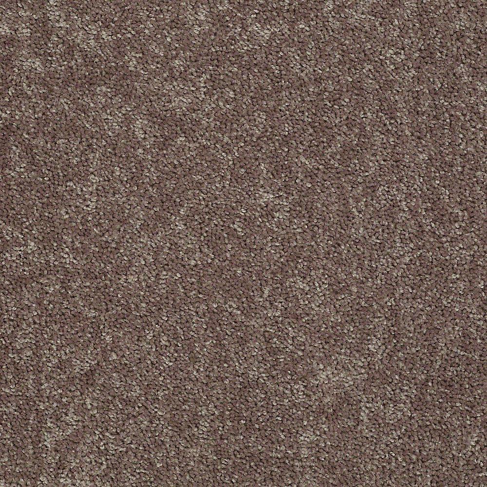 Trafficmaster Residential Carpet Sample Palmdale I 12