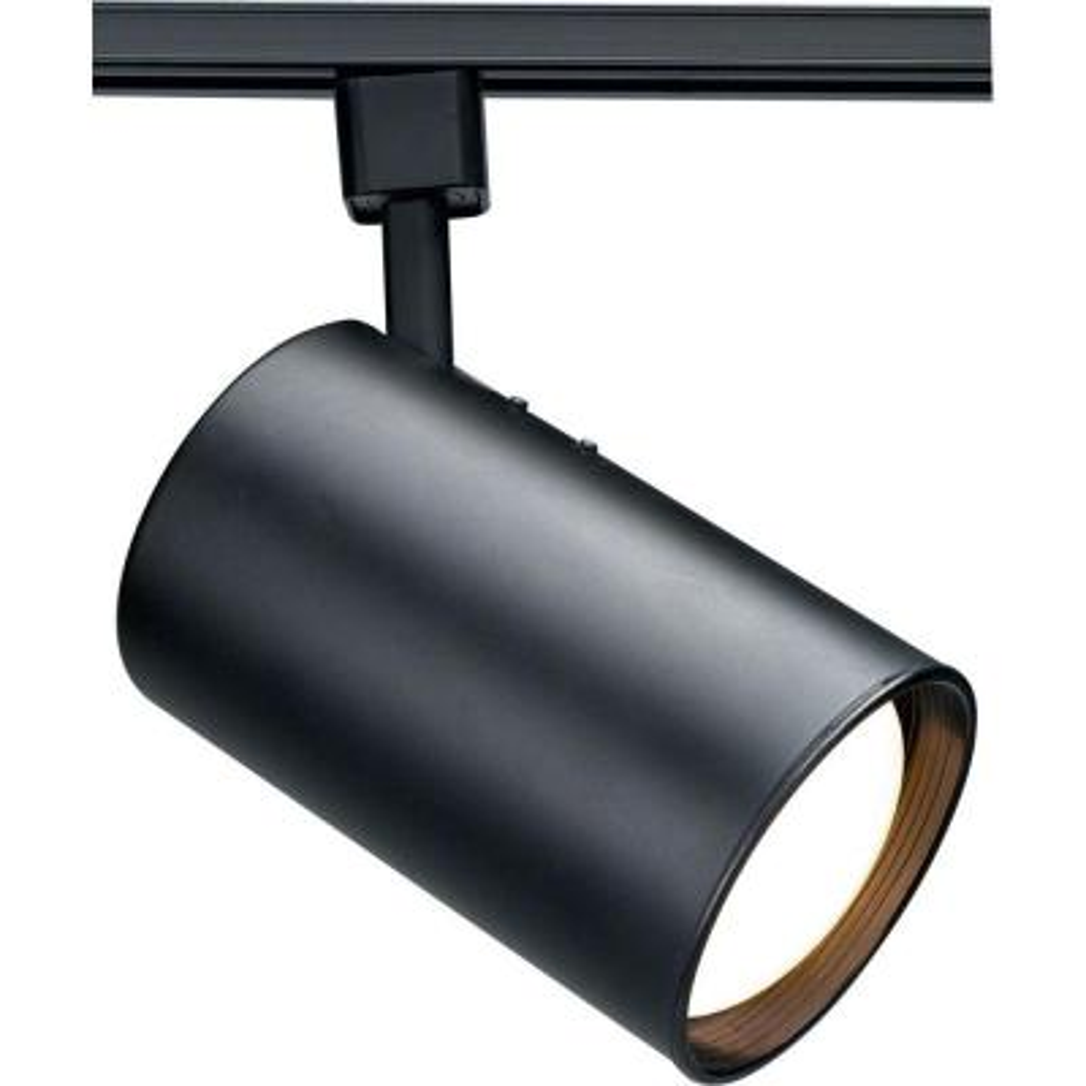 1-Light Black Incandescent Track Lighting Head