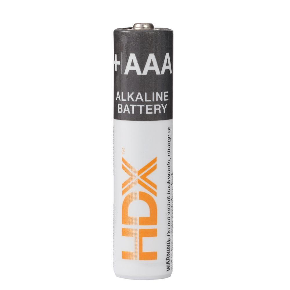 AAA Alkaline Battery (64-Pack)