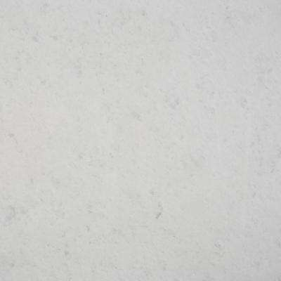 3 in. x 3 in. Marble Countertop Sample in Opal White Marble