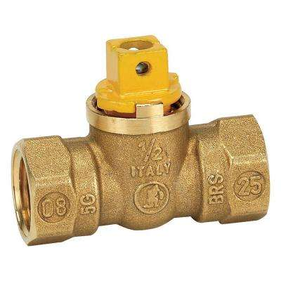1/2 in. Brass FIP x FIP Square Head Gas Ball Valve