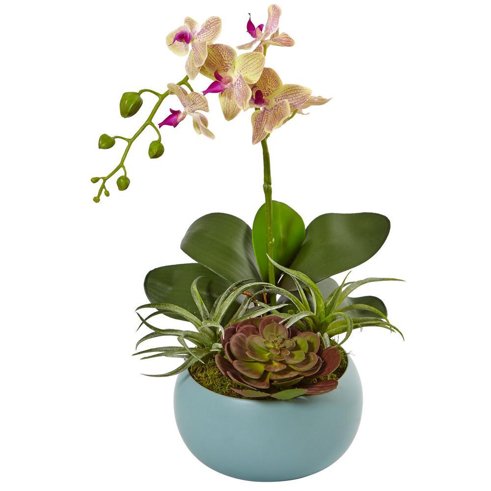 Indoor Phalaenopsis Orchid and Succulents Artificial Arrangement in Decorative Vase