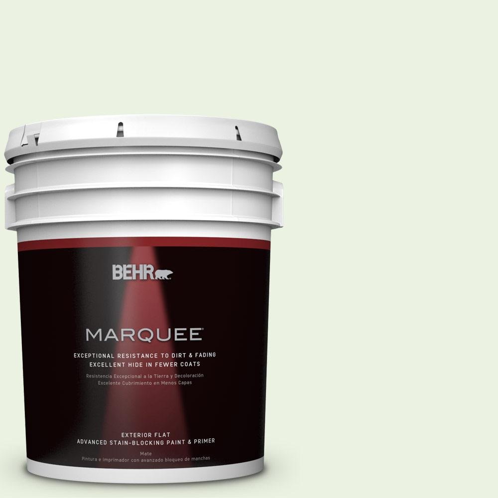 BEHR MARQUEE 5-gal. #P380-1 Magic Mint Flat Exterior Paint