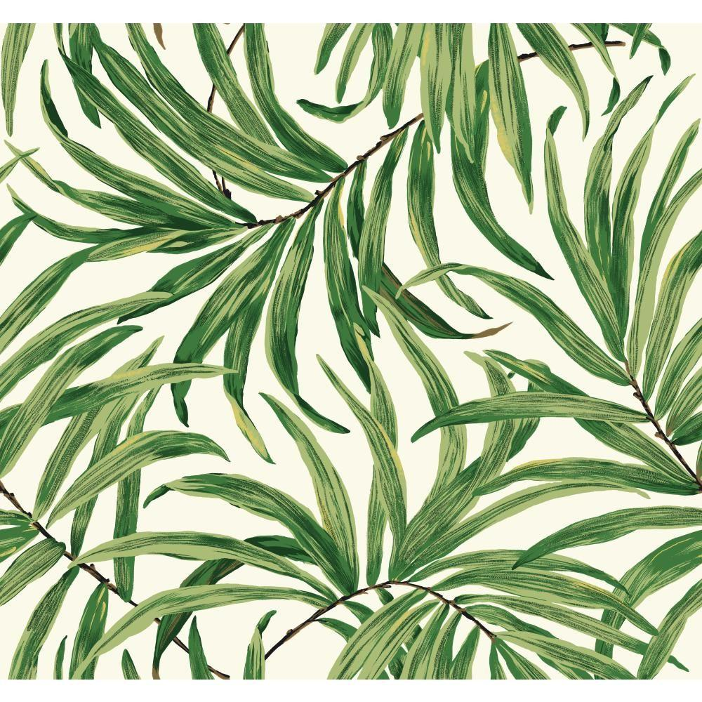 York Wallcoverings Tropics Bali Leaves Wallpaper At7050