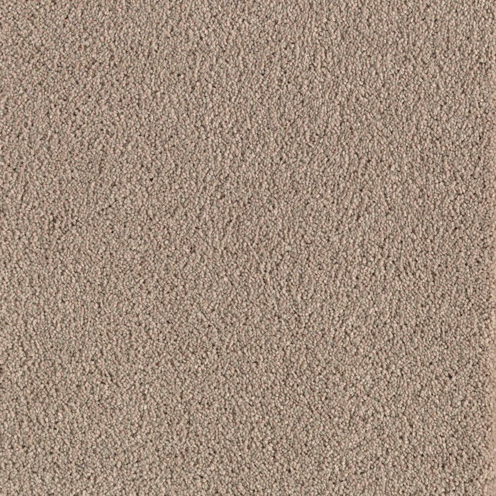home decorators collection astoria color winter garden 12 ft