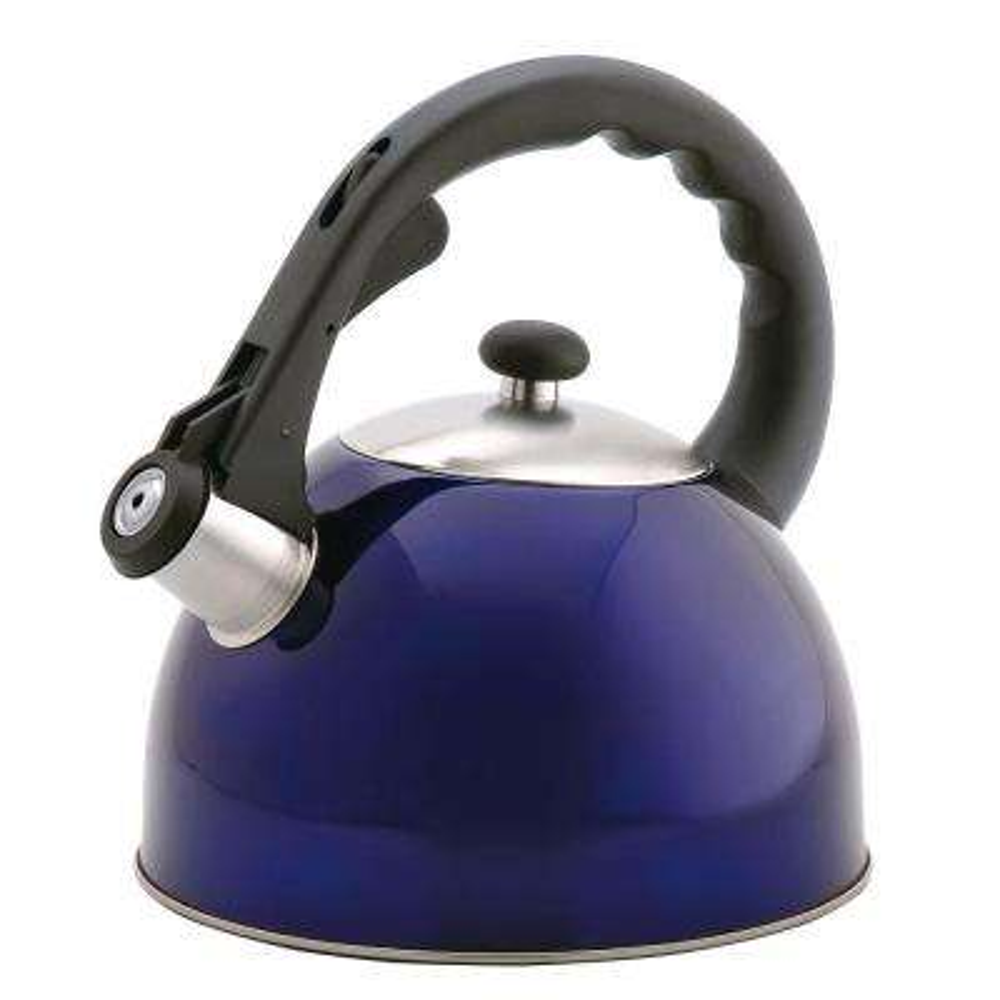 Satin Splendor 11.2-Cup Stovetop Tea Kettle in Blue