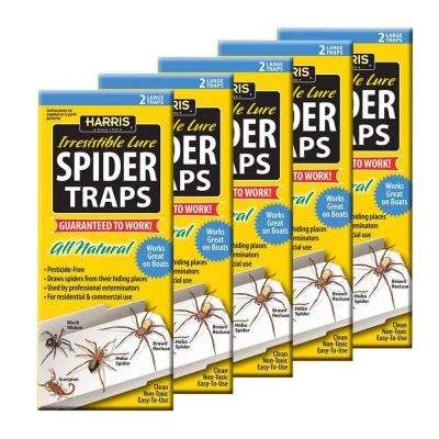 Spider Trap Value Pack