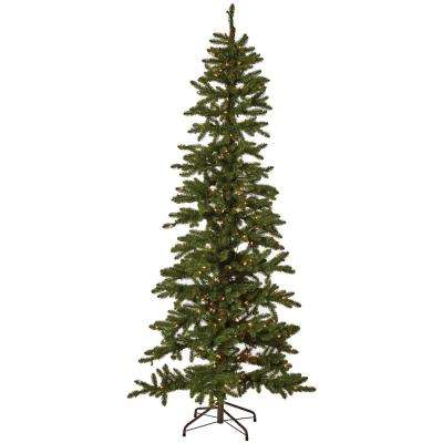 7 ft. Indoor Pre-Lit Kensington Tree with Clear Lights