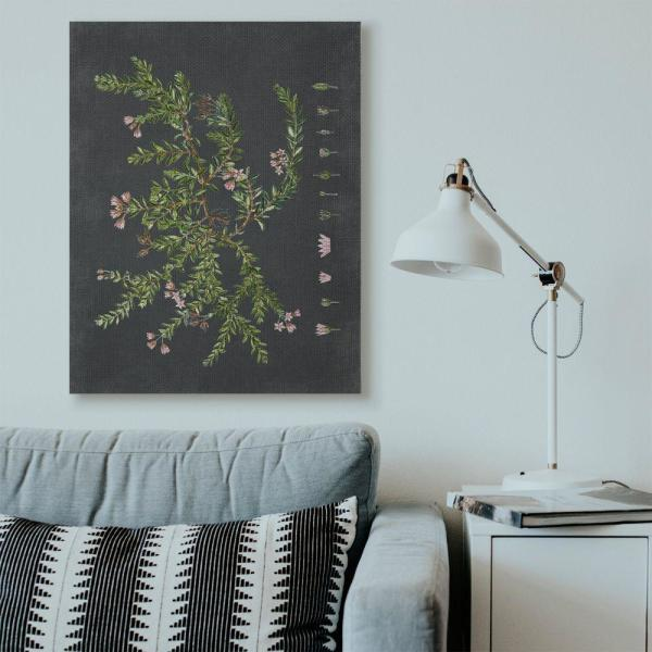 Stupell Industries Botanical Drawing Flower Pink On Black Design By Lettered And Lined Canvas Typography Wall Art 48 In X 36 In Fap 161 Cn 36x48 The Home Depot