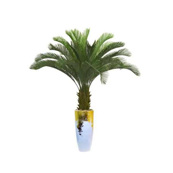 Laura Ashley 69.5 in. Palm Tree Artificial Faux Dcor in Resin