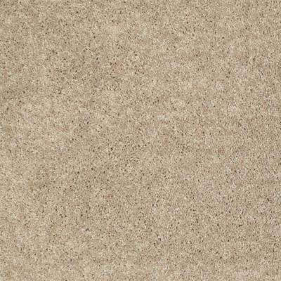 Palmdale I - Color Honey Wheat 12 ft. Carpet