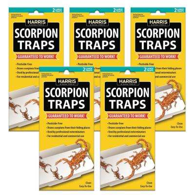 Scorpion Glue Trap (5-Pack)