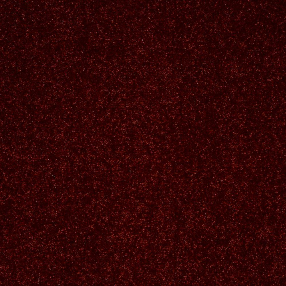 Home Decorators Collection Full Bloom II - Color Salsa Dance Texture 12 ft. Carpet