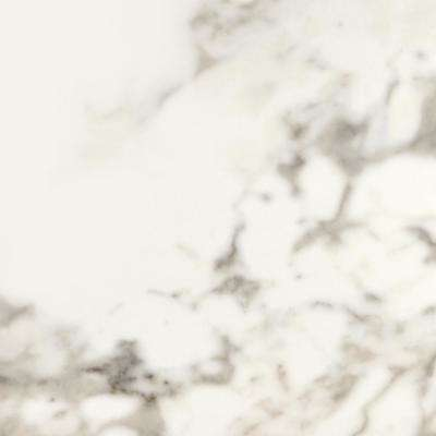 Marble View Calacatta Polished 24 in. x 24 in. Color Body Porcelain Floor and Wall Tile (15.2 sq. ft. / case)