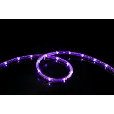 16 ft. Purple All Occasion Indoor Outdoor LED Rope Light 360° Directional Shine Decoration (2-Pack, 32 ft. Total)