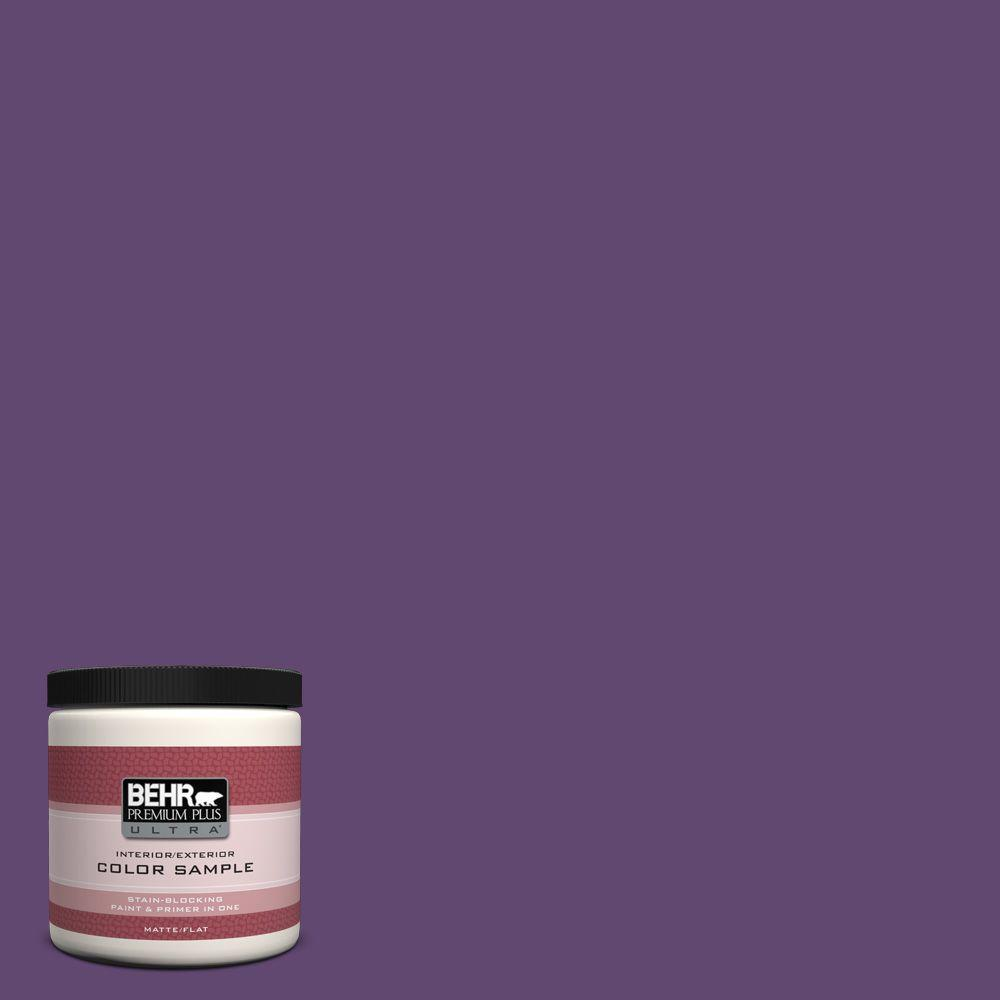 S G 670 Deep Violet Matte Interior Exterior Paint And Primer In One Sample
