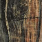 Formica 4 Ft X 8 Laminate Sheet In 180fx Petrified Wood