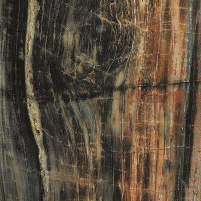 4 ft. x 8 ft. Laminate Sheet in 180fx Petrified Wood with Etchings Finish