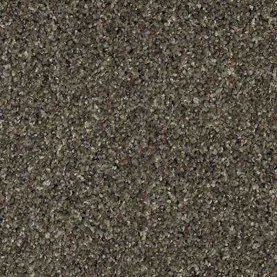 Carpet Sample - Barx I - Color Dried Peat Textured 8 in. x 8 in.