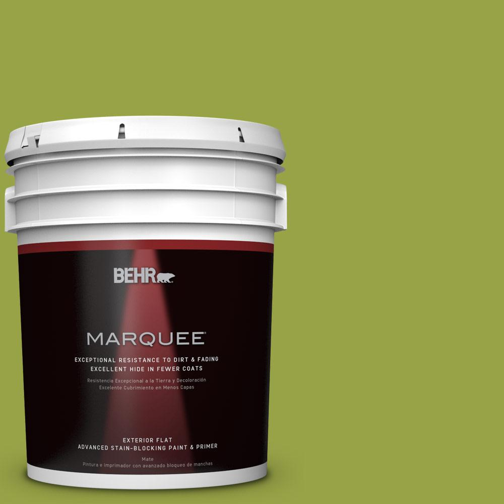5-gal. #P360-6 Fresh Apple Flat Exterior Paint