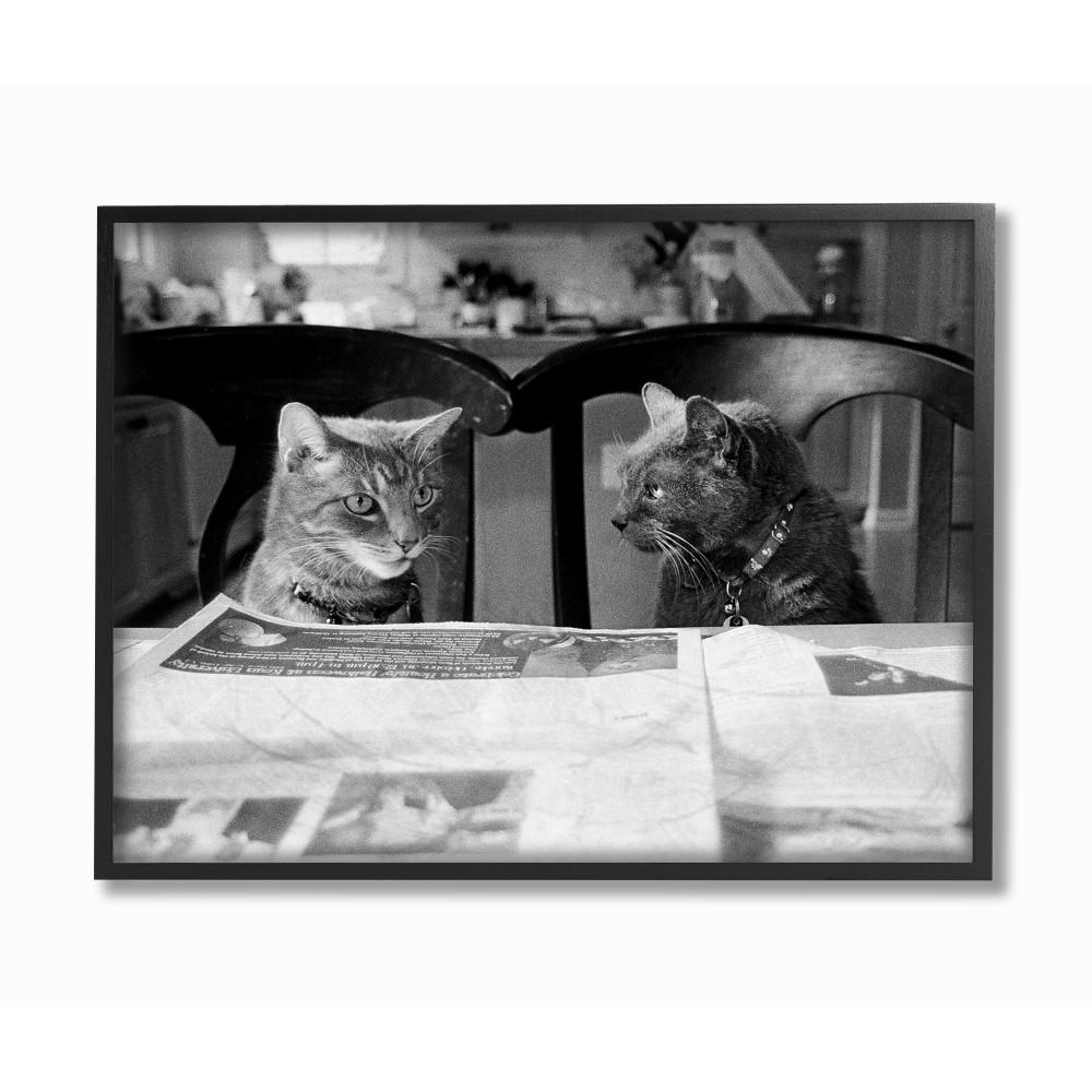 11 in x 14 in black and white cats gossiping before dinner photograph by kim levin framed wall art