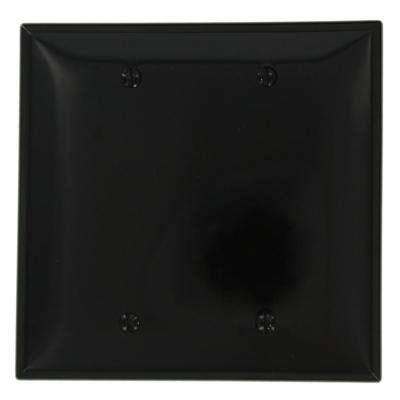 2-Gang No Device Blank Wallplate, Midway Size, Thermoplastic Nylon, Box Mount, Black
