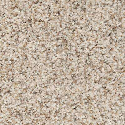 Carpet Sample - Riley I - Color Sanctuary Textured 8 in. x 8 in.