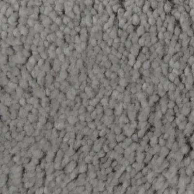 Carpet Sample - Harvest III - Color Rockdale Texture 8 in. x 8 in.
