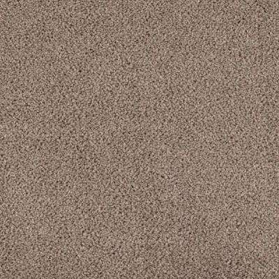 Carpet Sample - Collinger II Color - Reflection Texture 8 in. x 8 in.