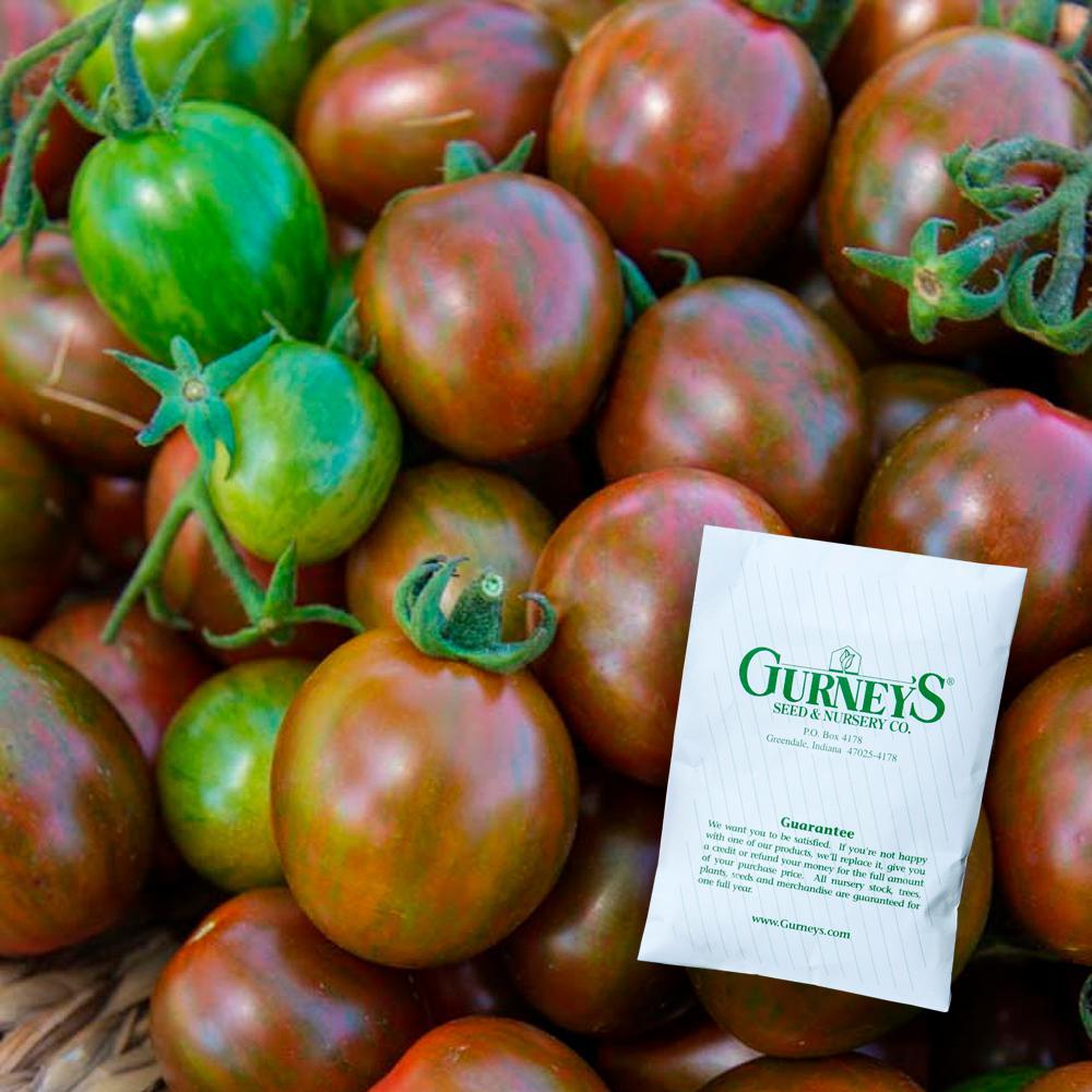Tomato Chocolate Sprinkles Hybrid (10 Seed Packet)