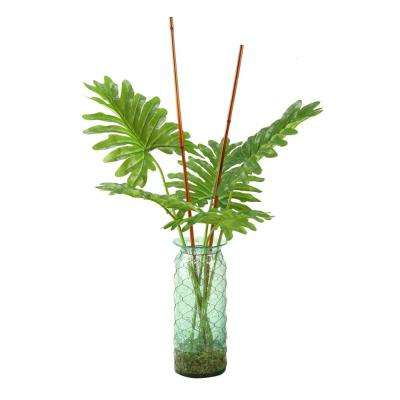 Indoor Selloum Philo Leaf Branches in Seeded Glass Vase