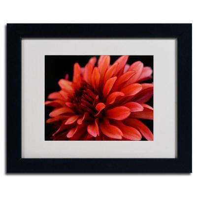 11 in. x 14 in. Red Dahlia Matted Framed Art
