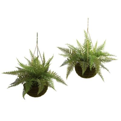 Indoor/Outdoor Leather Fern with Mossy Hanging Basket (Set of 2)