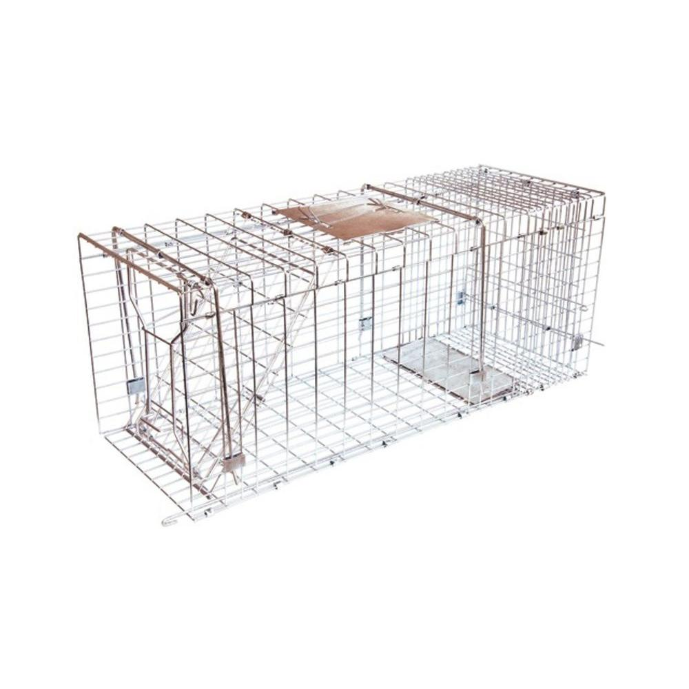 Answer Single Door Live Animal Cage Trap for Medium to Large