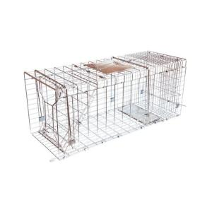 JT Eaton Answer Single Door Live Animal Cage Trap for Medium to Large Size Pests... by JT Eaton