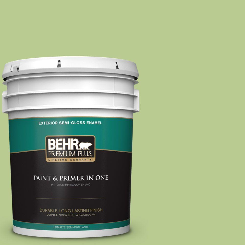 5 gal. #420D-4 Marsh Fern Semi-Gloss Enamel Exterior Paint and Primer