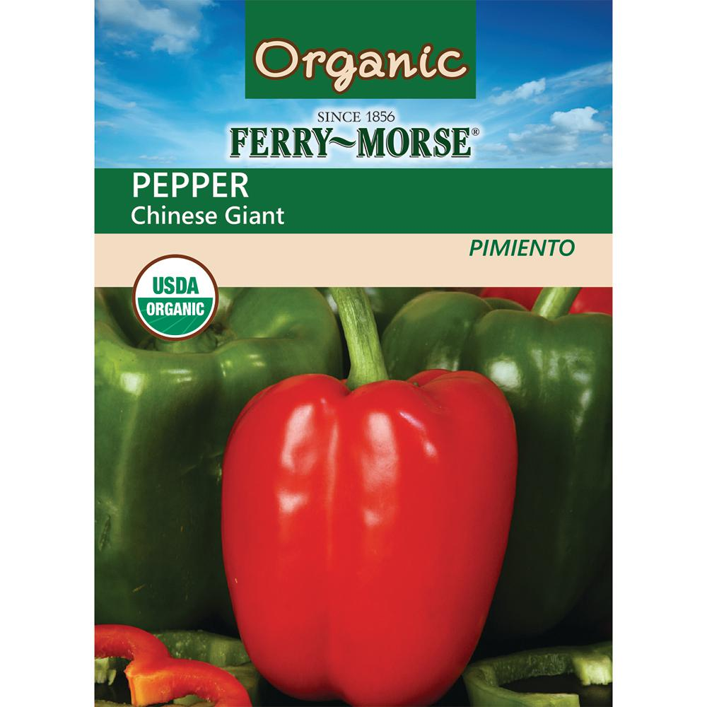 Pepper Chinese Giant Organic Seed