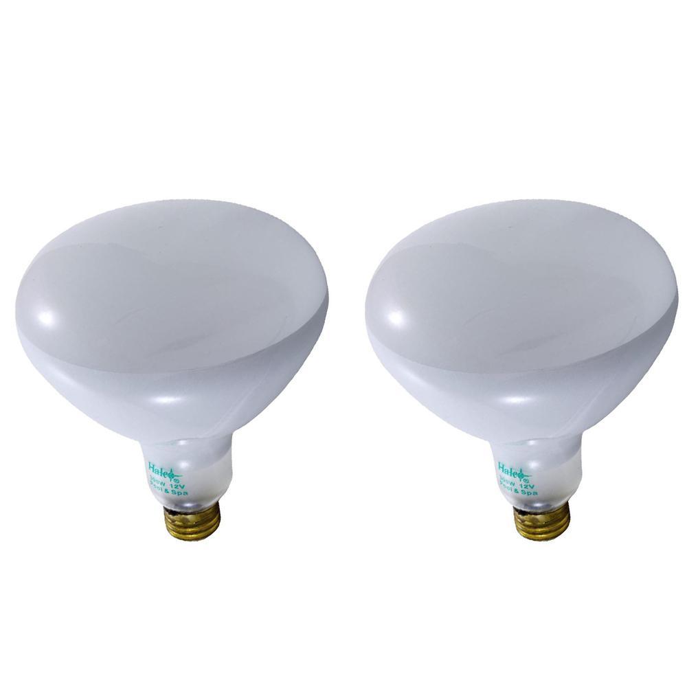 Halco 400-Watt R40 Flood Specialty Pool Spa Replacement Light Bulb (1-Bulb) 104038