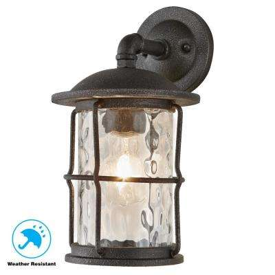 1-Light Gilded Iron 13.5 in. Outdoor Wall Mount Lantern