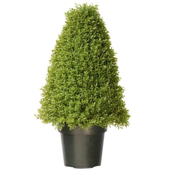 30 in. Boxwood Tree with Dark Green Growers Pot with 50 Clear Lights