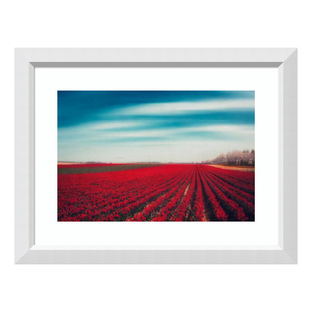 """""""Tulips"""" by Dirk Wuestenhagen Framed Wall Art"""