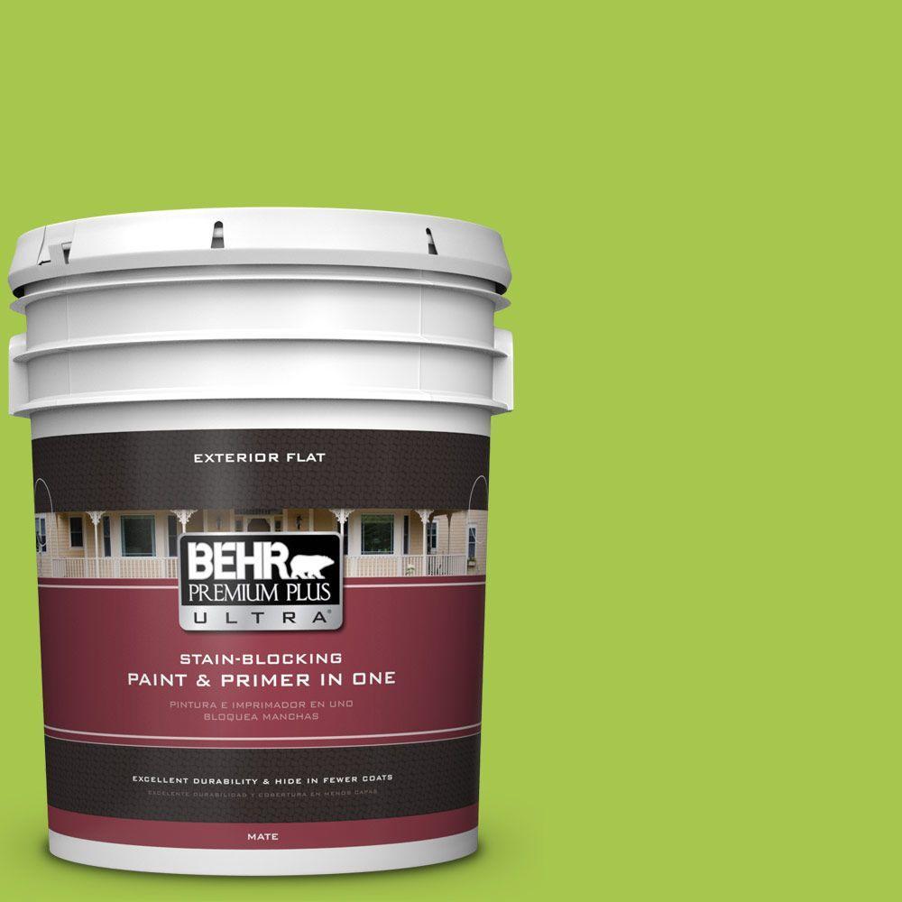 BEHR Premium Plus Ultra 5-gal. #420B-5 Sweet Midori Flat Exterior Paint