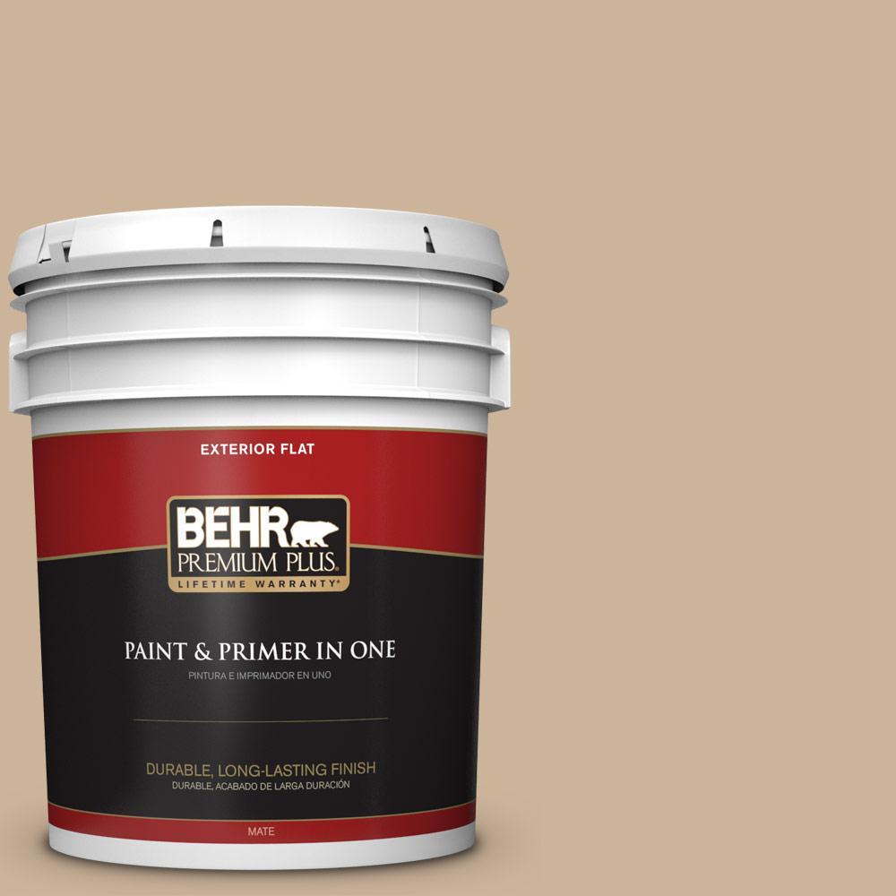 5 gal. #T17-03 Sepia Filter Flat Exterior Paint