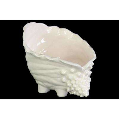 7.25 in. H Seashell Decorative Sculpture in White Gloss Finish