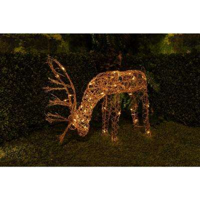 25 in.  Grazing Rattan Reindeer with 50-Halogen Lights (Plug-In)