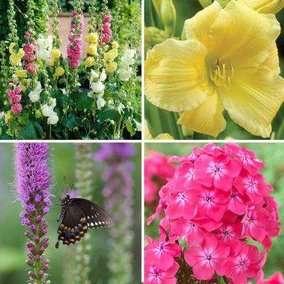 Butterfly Garden Bulbs (57-Pack)