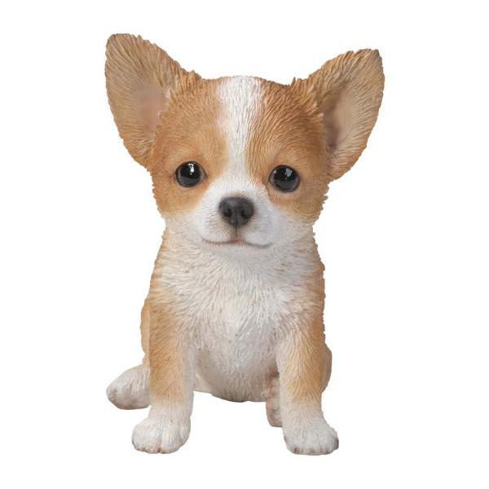 Brown/White Chihuahua Puppy Statue