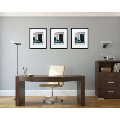 Contempo 16 in. x 20 in. (11 in. x 14 in. ) Black Wood Frame