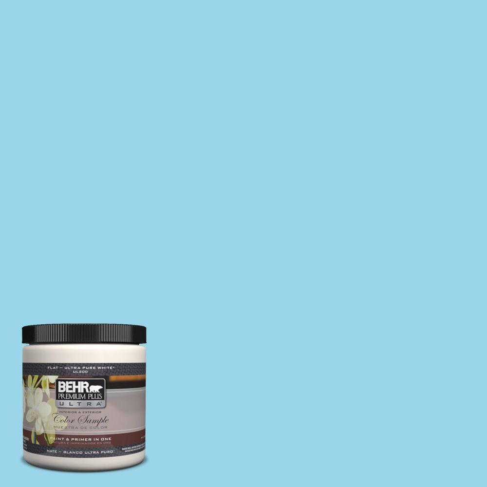 8 oz. #P490-2 Blue Sarong Interior/Exterior Paint Sample