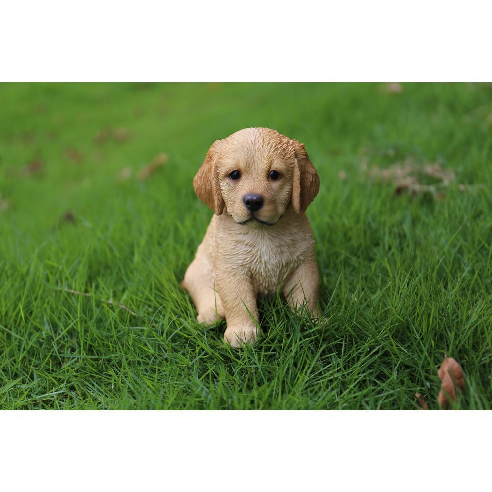 Hi Line Gift Yellow Golden Retriever Puppy Sitting